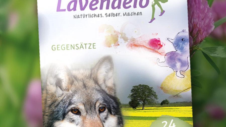 Lavendelo Ausgabe 7