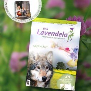 Lavendelo-Abo mit Prämie Senfkochbuch