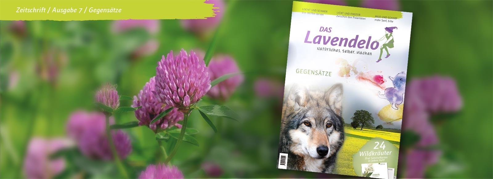 Lavendelo 7 Gegensätze