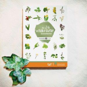 Wildkräuterkarten-Box vom Lavendelo-Verlag