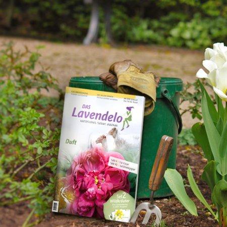Lavendelo Ausgabe10 im Garten