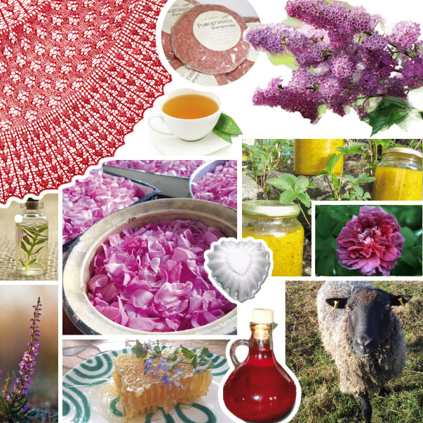 Ausgabe 9 Das Lavendelo Inhalte