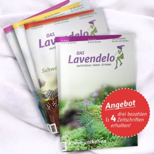 Jahreskreis Lavendelo 3