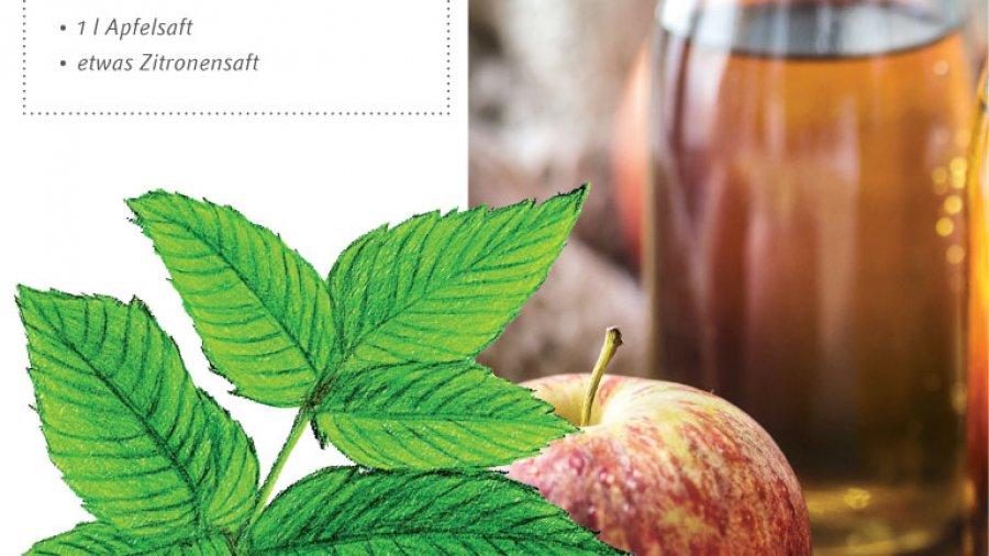 Giersch-Limonade Rezept