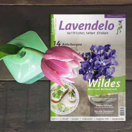 Lavendelo im Frühling WIldes