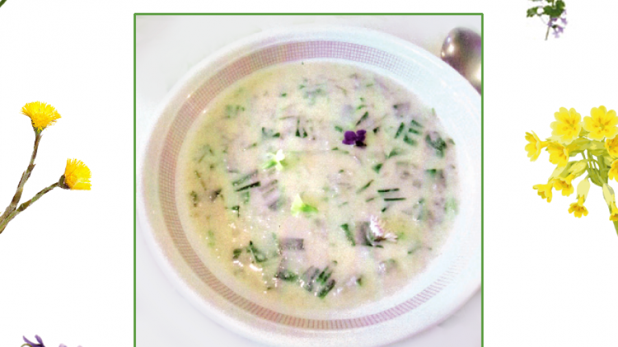 Grüne Neune Suppe