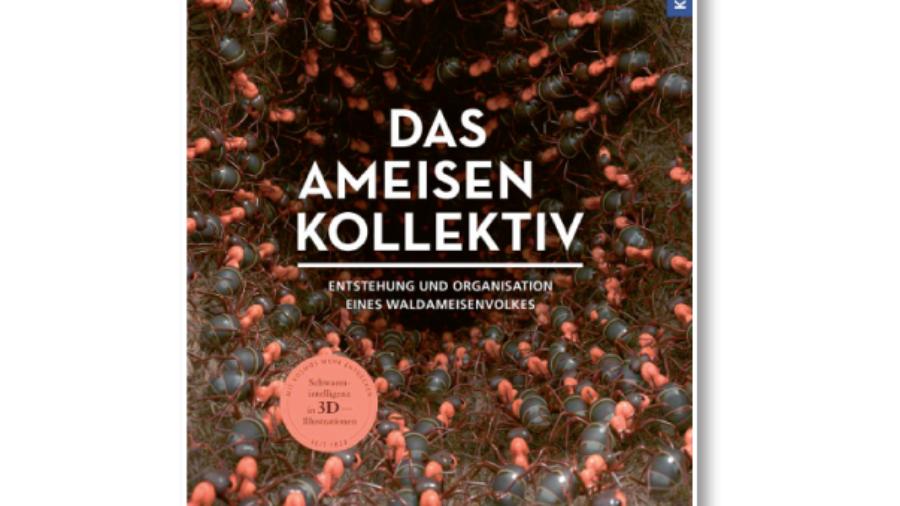 Armin Schieb: Das Ameisenkollektiv