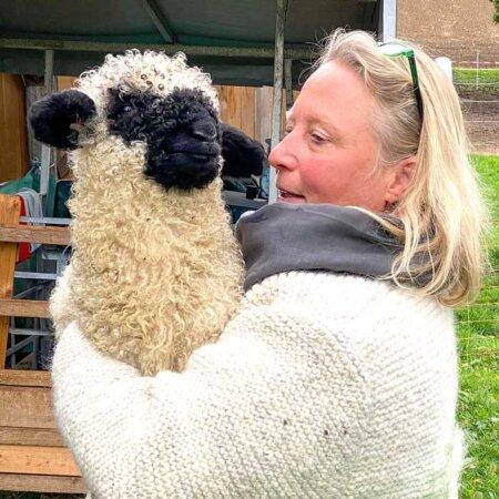 Cornelia Schurer Esel und Schafe